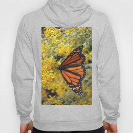 Monarch on Rubber Rabbitbrush Hoody