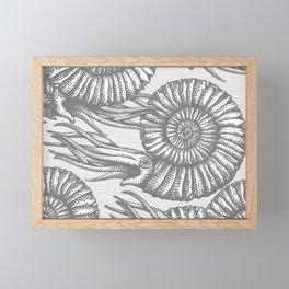 AMMONITE COLLECTION GRAY Framed Mini Art Print