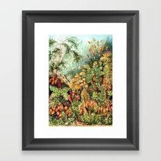 Botanic Vintage Framed Art Print