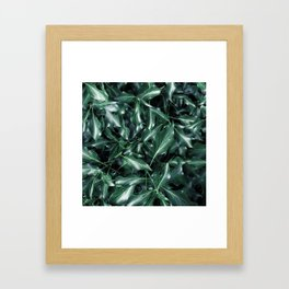 Ivy 01 Framed Art Print