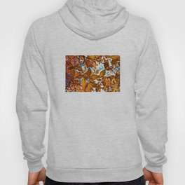 Fall Leaves in the Afternoon - The Peace Collection Hoody