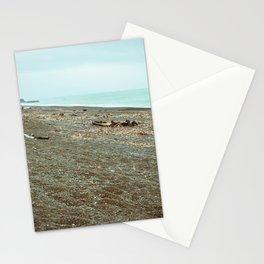 Driftwood Napier Beach Stationery Cards