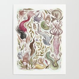 Mermaids and Sea Creatures Poster