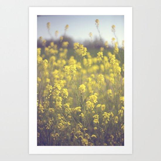 Mustard  Art Print