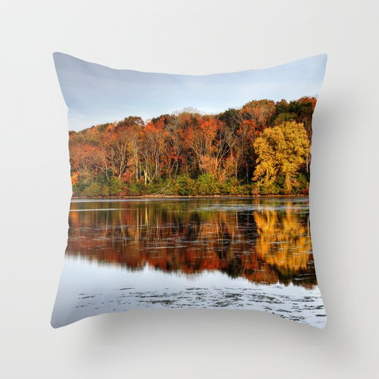 Rock Cut State Park Throw Pillow