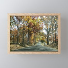 Autumn Path Framed Mini Art Print