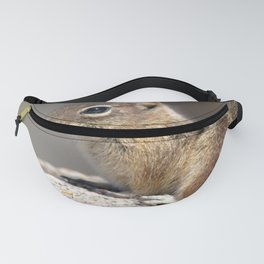Watercolor Golden-Mantled Ground Squirrel Fanny Pack