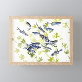 Fish Blue green fish design zebra fish, Danio aquarium Aquatic design underwater scene Framed Mini Art Print
