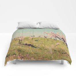 Almond Blossom Hill Comforters