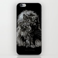 Who's for Dinner? Big Black & White Main Coon Cat iPhone & iPod Skin