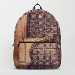 Doors Of Rajasthan 4 Backpack