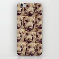 Dogs are Family iPhone & iPod Skin