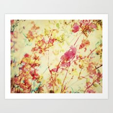 Collage of color Art Print