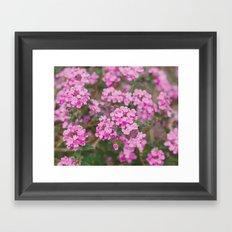 Purple Flowers in the Field Framed Art Print