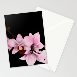 Orchid Mantis Orchids Stationery Cards
