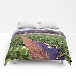 Strawberry Field Comforters