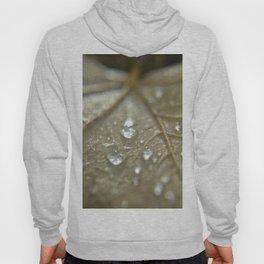 raindrops on fallen leaf Hoody