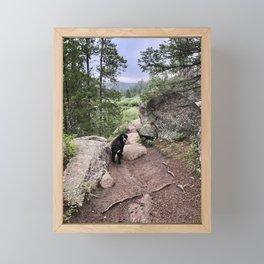 Follow me Framed Mini Art Print
