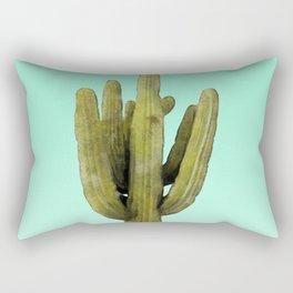 Cactus on Cyan Wall Rectangular Pillow