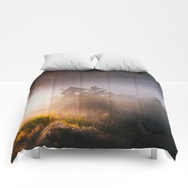 Cleansing Comforters