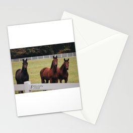 Three Musketeers Stationery Cards