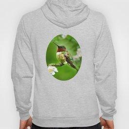 Hummingbird Flora Hoody