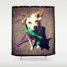 Blanca Boo To The Rescue Shower Curtain