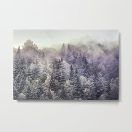 Suprise sunrise. Into the foggy woods. Metal Print
