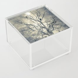 Raven's shelter II  (colour option) Acrylic Box