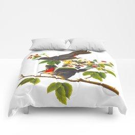 Cat Bird John James Audubon Scientific Illustration Comforters