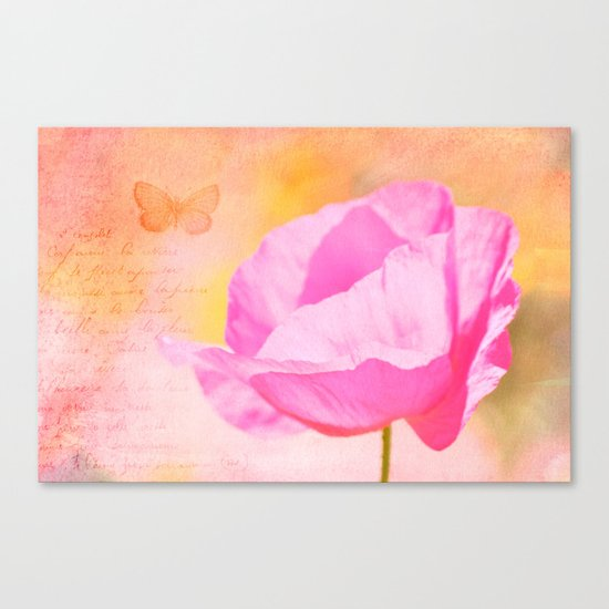 Pink Poppy Flower Canvas Print