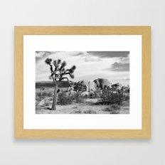 Black and White Joshua Tree National Park Framed Art Print