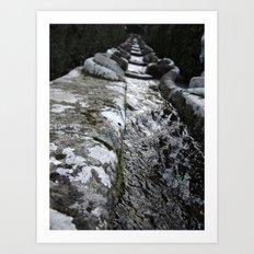 Villa Lante Water Chain Art Print