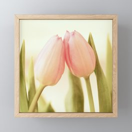 Be My Valentine - Two Pink Tulips Framed Mini Art Print