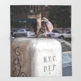 NYC Pigeon Throw Blanket