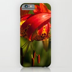Firery Lily Slim Case iPhone 6s