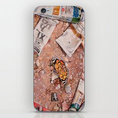 Paints iPhone & iPod Skin