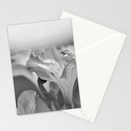 Garden in the spring Stationery Cards