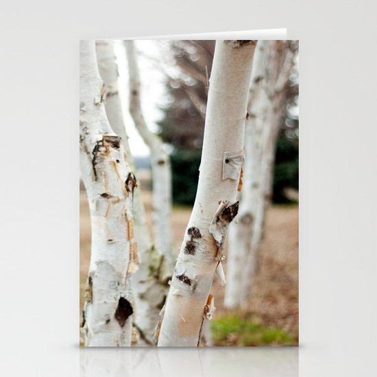Line of Birches Stationery Cards