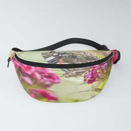Butterfly Vanessa atalanta feeding on red flowers Fanny Pack