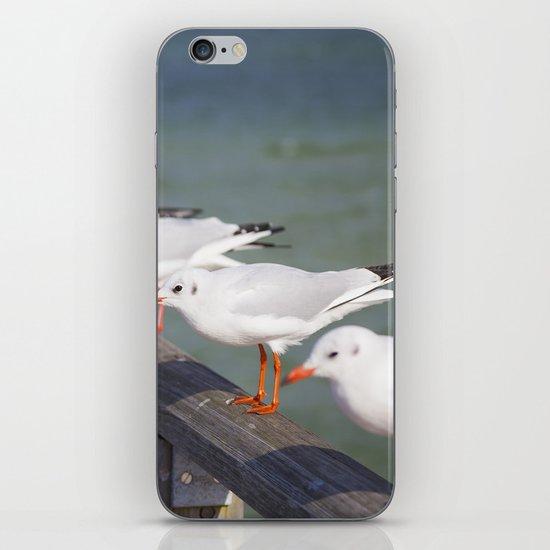 Seagulls II iPhone & iPod Skin
