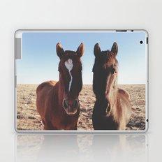 Horse Friends Laptop & iPad Skin