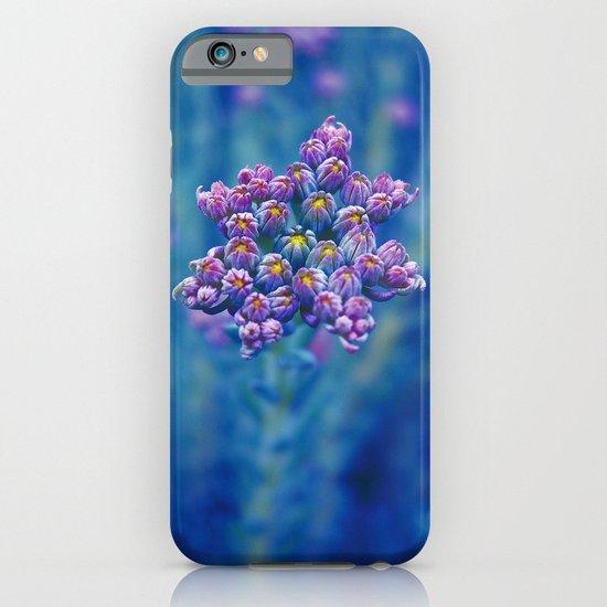 wild herb I iPhone & iPod Case