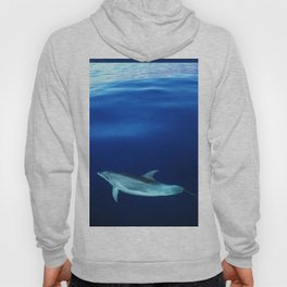 Dolphin and blues Hoody