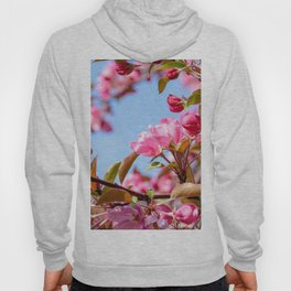 Paradize apple in bloom Hoody
