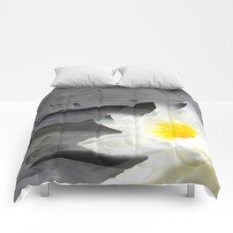 Launch Comforters