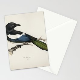 Eurasian magpie (PICA PICA) illustrated by the von Wright brothers Stationery Cards