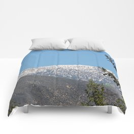 Southern California Snow Tease Comforters