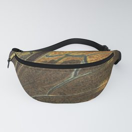 Antique Butterfly and Caterpillar Lithograph Fanny Pack