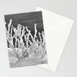 Frosted Plants 2 Stationery Cards